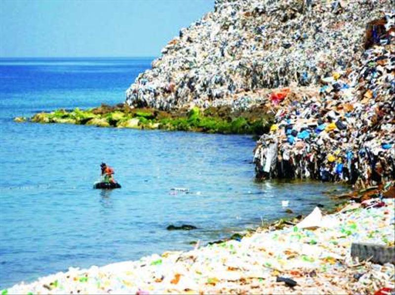 1,在国际海洋清洁日这一天,组织志愿者捡拾海洋垃圾,并对其进行科学
